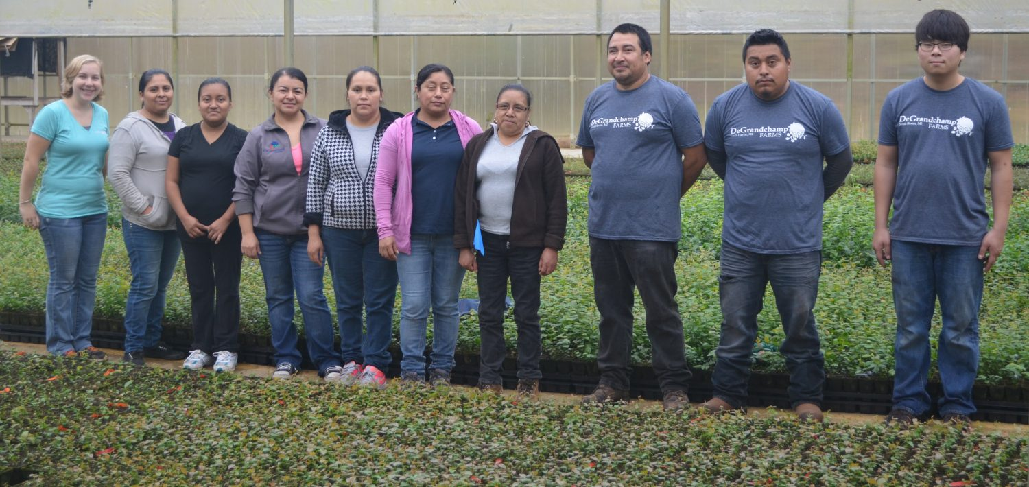Seven women and three men standing in a line from left to right in the middle of a greenhouse with rows of plants in front of and behind them