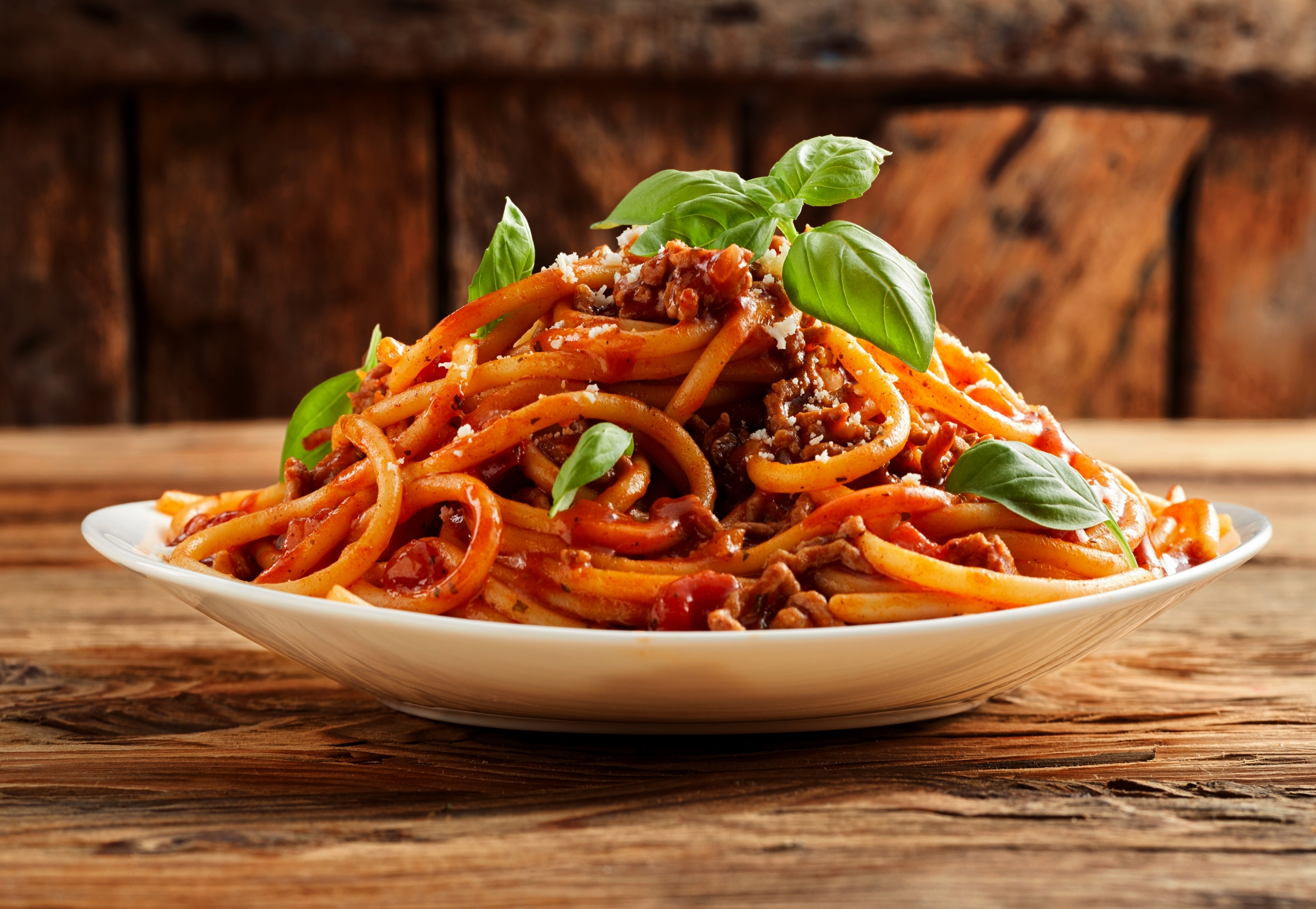 Photo of a plate loaded with spaghetti noodles and sauce garnished with basil leaves